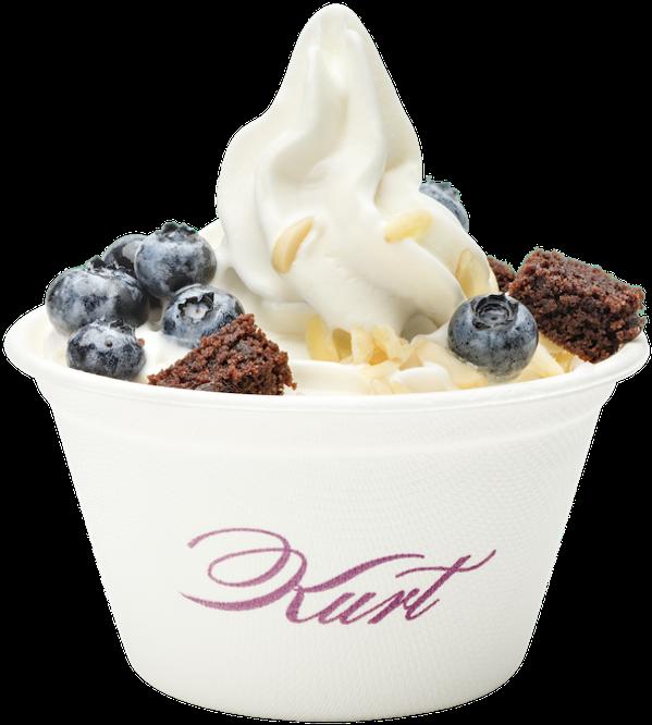 Kurt Frozen Yogurt